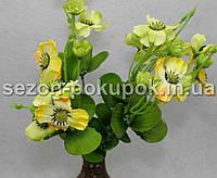 Букет анютины глазки (18-20 цветочков) Цвет -салатово-желтый Цена за букет