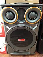 Комбоусилитель с аккумулятором колонка Sky Sound SS 666, микрофон, 120W