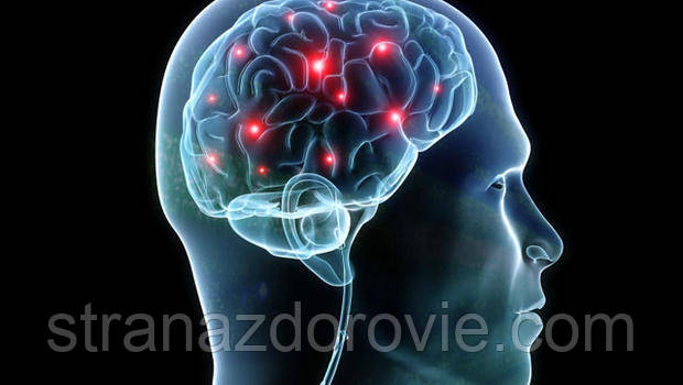 Капсулы для улучшения мозгового кровообращения
