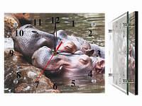 Часы настенные из стекла Влюбленные бегемотики