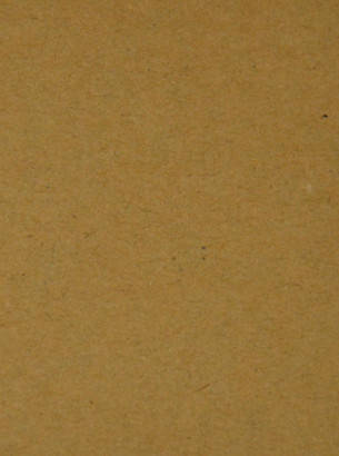 Дизайнерский картон Hyacinth крафт светлый, 250 гр/м2