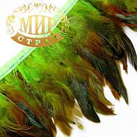 Тесьма перьевая (Петух), цвет Green, цена за 0,5м