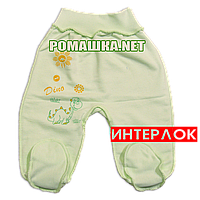 Ползунки (штанишки) на широкой резинке р. 56 демисезонные ткань ИНТЕРЛОК 100% хлопок ТМ Алекс 3165 Зеленый2