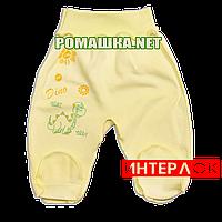 Ползунки (штанишки) на широкой резинке р. 56 демисезонные ткань ИНТЕРЛОК 100% хлопок ТМ Алекс 3165 Желтый1