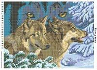 """Схема для вышивки бисером """"Взгляд волка""""."""