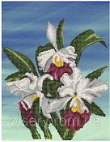 """Схема на атласе для вышивки бисером """"Орхидеи"""""""