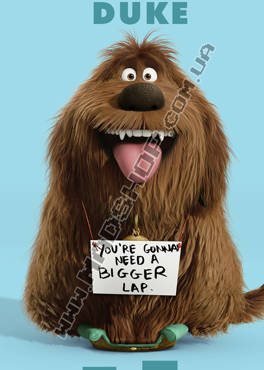 Картина 40х60 см Тайная жизнь домашних животных Дюк