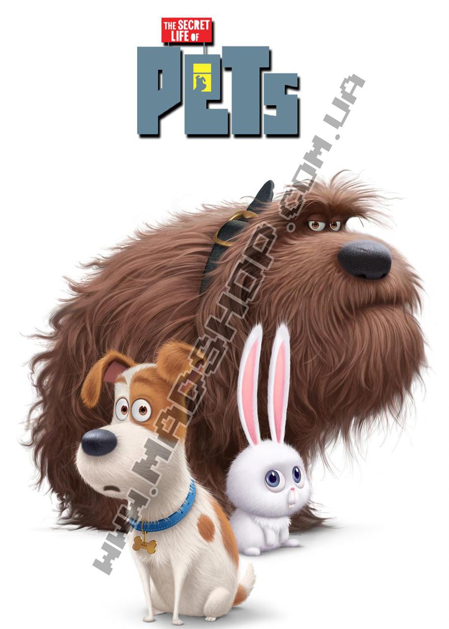 Картина 40х60 см Тайная жизнь домашних животных Дюк и Макс