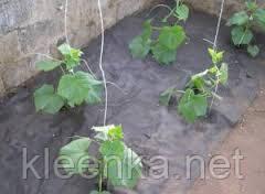 Черное агроволокно Agreen 50 г/м кв, спанбонд  для мульчирования клубники и других растений, фото 3