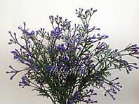 Травка с фиолетовыми цветочками