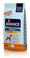 Корм Advance (Эдванс) Dog Medium Adult для взрослых собак средних пород,18 кг
