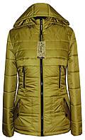 Модная куртка от производителя с капюшоном, фото 1