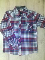 Детская рубашка для мальчика 12954 Турция