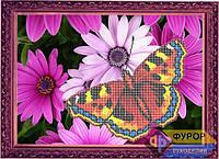 Схема для частичной вышивки бисером - Бабочка в цветах, Арт. ЖБч3-25