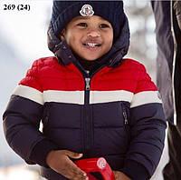 Детская куртка весна 269 (24)