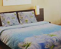 Комплект постельного белья Флорида