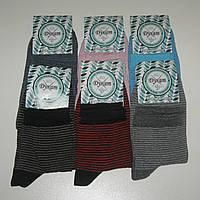Женские носки Дукат - 6.50 грн./пара (средние, узкая полоска)