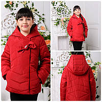Демисезонная куртка для девочки  Барбара , пудра, фото 1