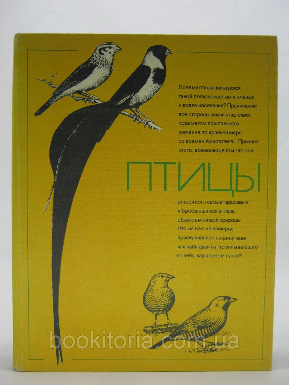 Птицы (б/у).