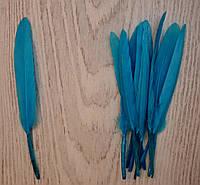 Перо цветное, длина 13-14 см, 100 шт., цвет темно-голубой