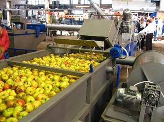 В Украине откроют завод по переработке фруктов