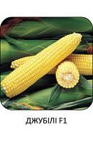 "Кукуруза сахарная Джубили Ф1 20 шт,  ТМ ""Syngenta Seeds ""(Голландия)"