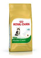 Корм для котят мейн-куна Royal Canin (Роял Канин) Maine Coon Kitten 2кг.