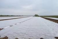 Агроволокно Marma П 50 1,6*100 белое
