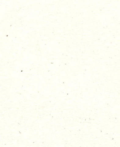 Дизайнерский картон Mottled, молочный, 250 гр/м2