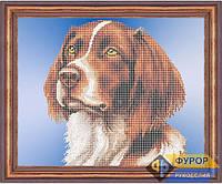 Схема для вышивки бисером - Собака спаниель, Арт. ЖБч3-039
