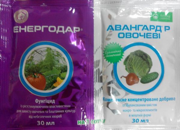 Энергодар(превикур энерджи)+Авангард овочі