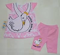 Костюм летний на девочку 62,68,74 см.  Детская одежда оптом Турция.