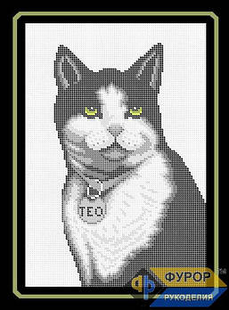 Схема для вишивки бісером картини Кот з медальйоном (ЖБп4-007-2)