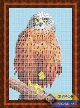 Схема для вишивки бісером картини Птах орел (ЖБп4-013)
