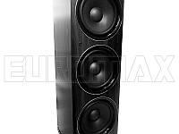 Акустические колонки EUROMAX 25х33х113см, 2х150Вт, Bluetooth, караоке, микрофон, пульт ДУ (EU2520)