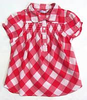 Блуза для девочек Zippy (Португалия)