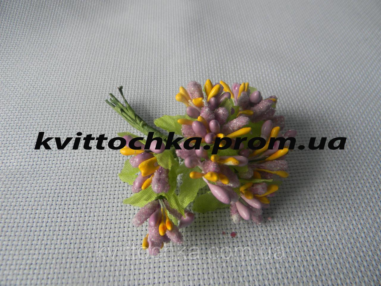 Соцветие тычинок цвет - фиолетовый с жёлтым