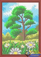 Схема для вышивки бисером - Ромашки на лугу, Арт. ДБп5-056