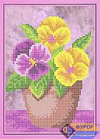 Схема для вышивки бисером - Фиалки в горшочке, Арт. ДБч5-068