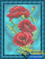 Схема для вышивки бисером - Цветы полевые маки, Арт. ДБп5-085