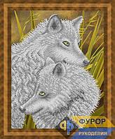 Схема для вышивки бисером - Два волка, Арт. ЖБч3-087-1
