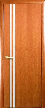 Модель Вита ДВП зеркало межкомнатные двери, Николаев, фото 2