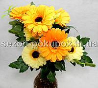 Букет маргаритки (7 цветочков) Цвет - оранжево-желтый Цена за букет