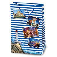 Подарочный бумажный пакет LL-1 - Серия 2 - D-108 Одесса