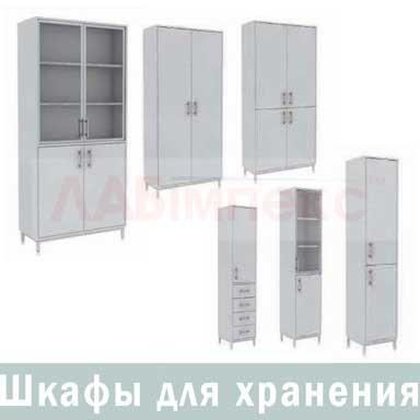 Шкаф для хранения лабораторной посуды, оборудования, реактивов, документов ШЛ, Украина
