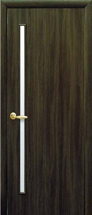 Модель Глория ЭКОШПОН КЕДР со стеклом сатин межкомнатные двери, Николаев, фото 2