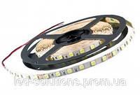 Лента LEDEX - SMD 5050 14,4W 12V 60 LED/метр IP65  Double PCB 6500K