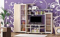 Рио 3 набор для гостиной (Мебель-Сервис) дуб самоа 2300х550х1706 мм