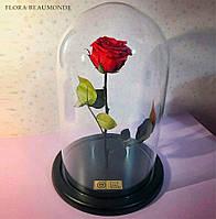 Роза в стеклянной колбе.Красная, Синяя, Белая, Розовая, Малиновая, Фиолетовая, Лайм, Чёрная.