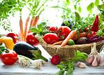 Производители семян овощей